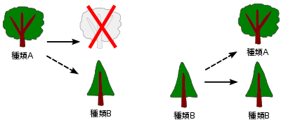森の木の図形